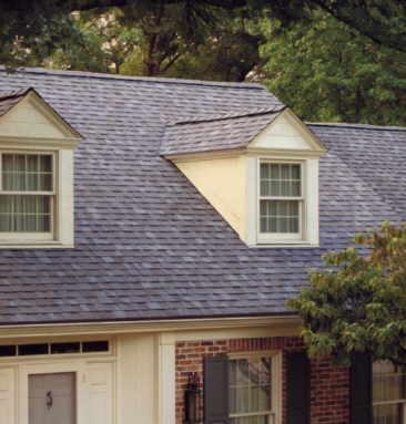 Roofing Gutter Service